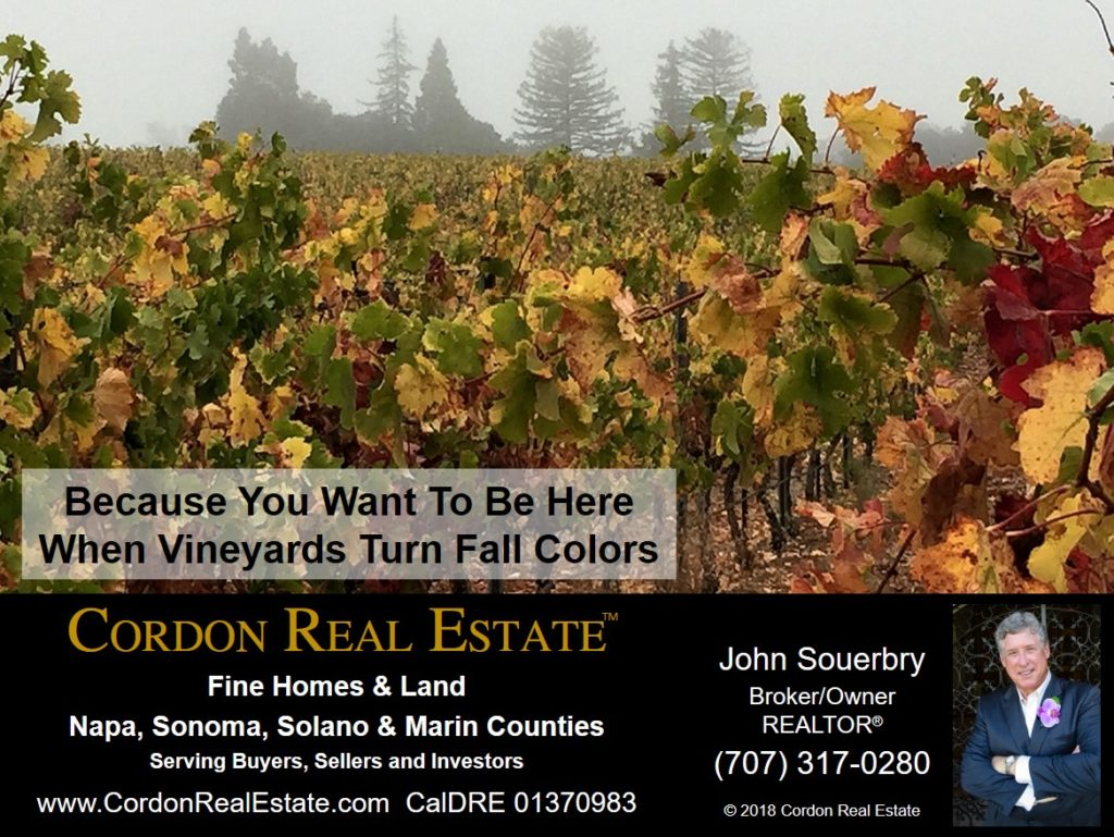 Because You Want To Be Here When Vineyards Turn Fall Colors Cordon Real Estate 1