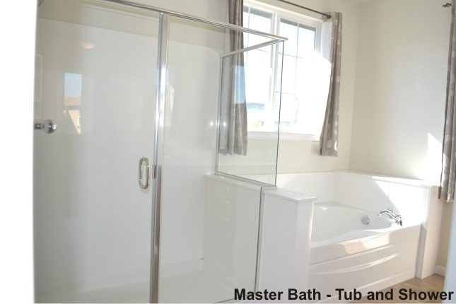 Master bath tub and shower 8Nov13