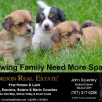 Growing Family Need More Space Cordon Real Estate home buying home selling